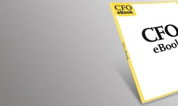 2012-2013 CEO & Senior Executive Compensation Report for Private Companies