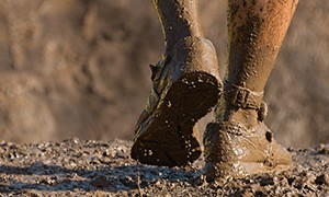 Gold In The Mud: Finding Insights When The Going Gets Tough