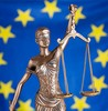 Eu law small