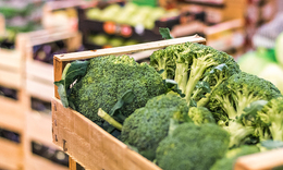 How AI Can Aid The Food Supply Chain