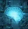 Mit researchers create %22brain on a chip%22 small