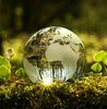 climate smart technologies have become an innovation focus for many startups home