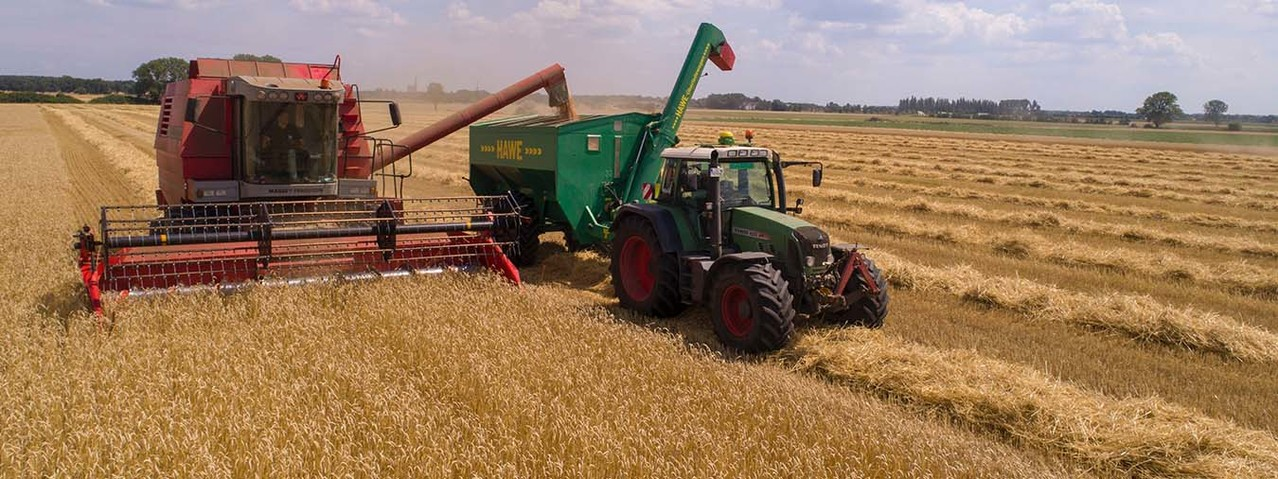 IBM Research to pilot blockchain agriculture tool in Kenya | Articles | Chief Technology Officer
