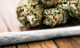 ​Why companies are teaming up within the marijuana industry