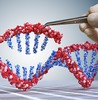 Using genomic data to empower patients small