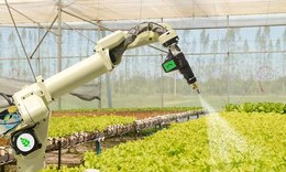 How AI is transforming agriculture